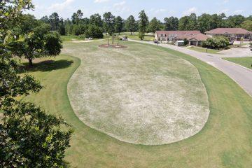 golf, golfer course travel