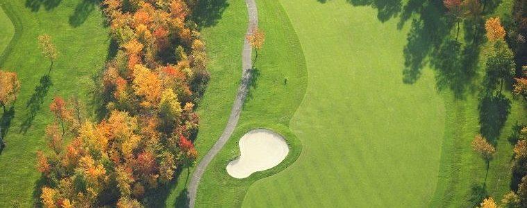 Top Reasons Why Everyone Should Play Golf